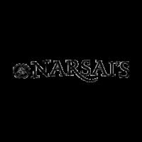 narsai-v2